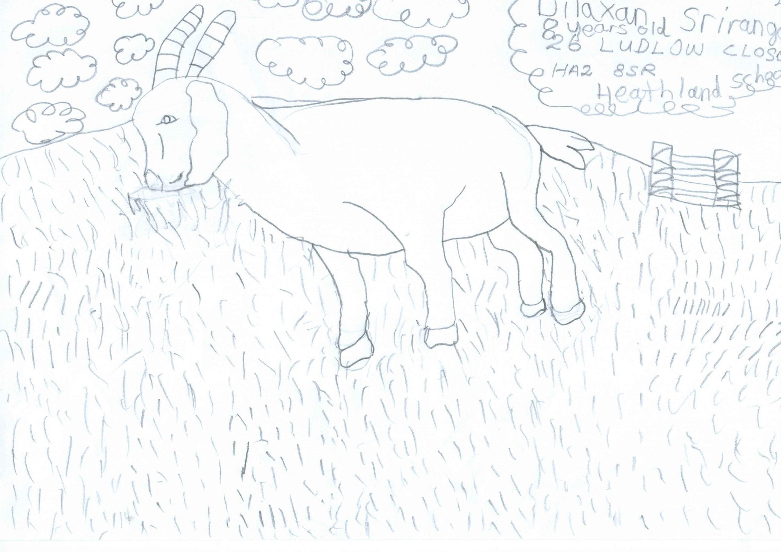 Dilaxan Srirangan, Age 8