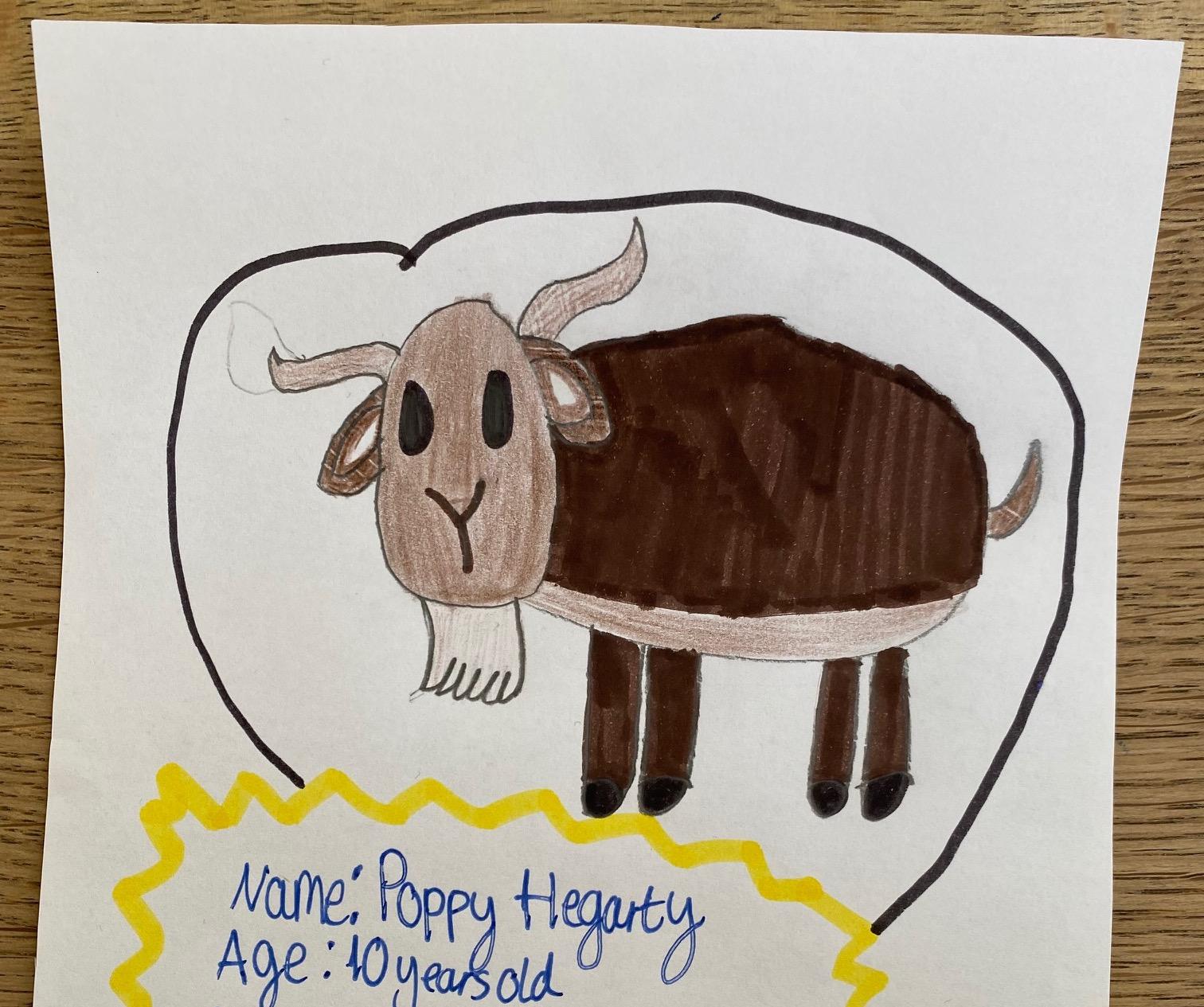 Poppy Hegarty, Age 10