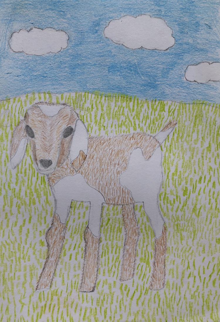 Rosanna Jerdin, Age 8