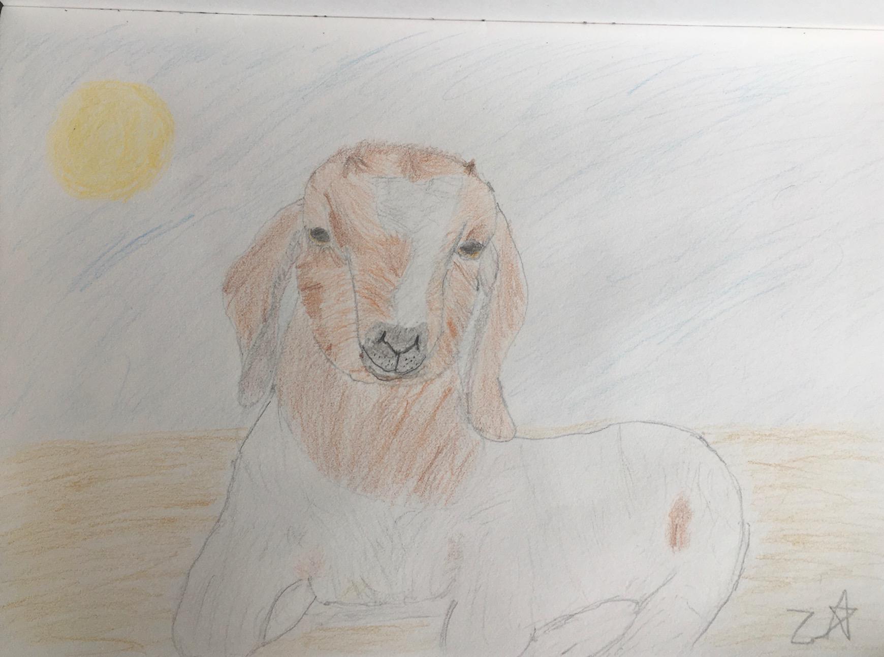 Zaraphina Hawkins, Age 11